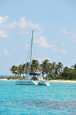 Tobago Cays catamaran mer cocotier